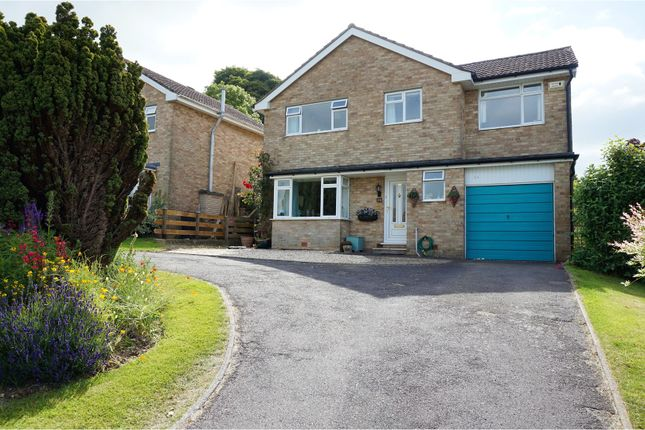 Thumbnail Detached house for sale in Holland Way, Blandford Forum