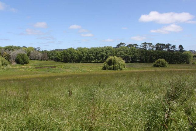 Thumbnail Property for sale in Dairy Flat, Rodney, Auckland, New Zealand