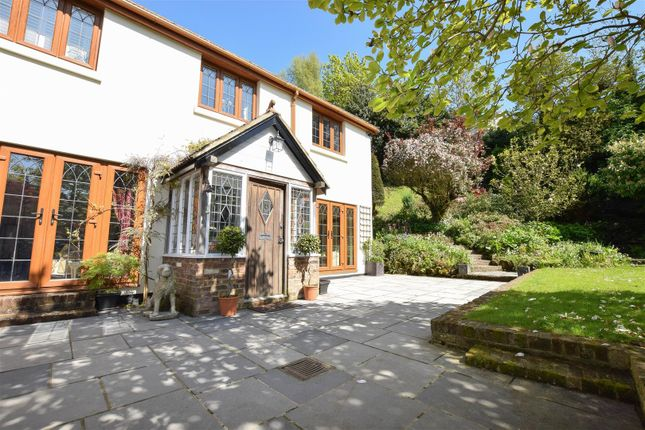 Thumbnail Detached house for sale in Marianne Park, Ashburnham Road, Hastings