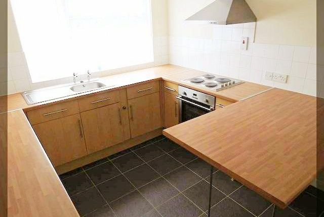 Thumbnail Terraced house to rent in Cormorant Close, Bransholme, Hull