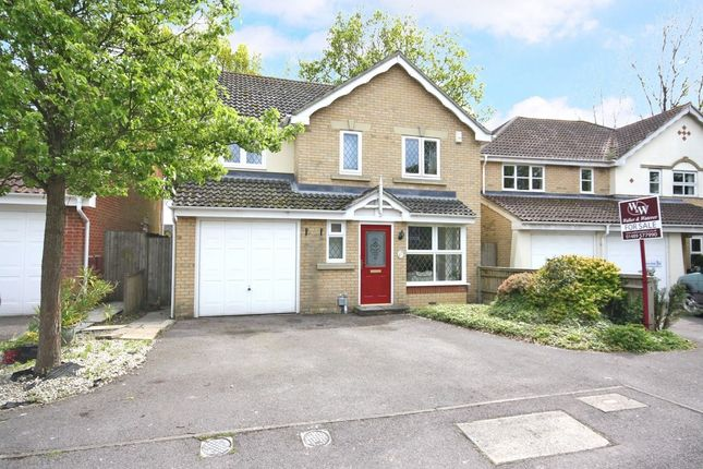Thumbnail Detached house for sale in Snowdrop Close, Locks Heath, Southampton