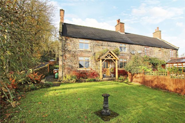 Thumbnail Semi-detached house to rent in Hallwater, Endon, Stoke-On-Trent