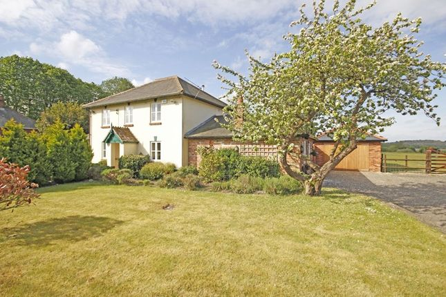 Thumbnail Detached house for sale in Sopley, Christchurch