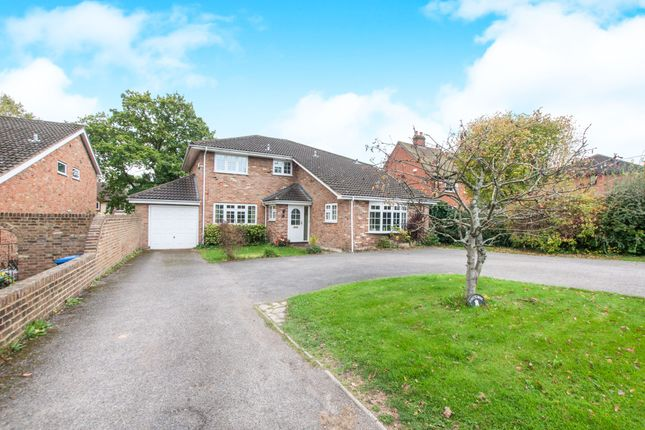 Thumbnail Detached house to rent in Beehive Lane, Binfield, Bracknell