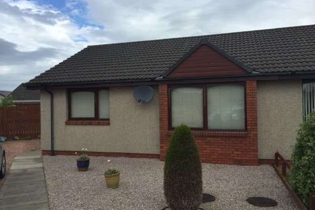 Thumbnail Semi-detached bungalow to rent in Mcfarlane Croft, Letham, Forfar