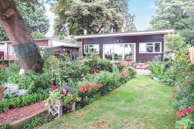 Thumbnail Bungalow for sale in Cleeve Park, Chapel Cleeve, Minehead