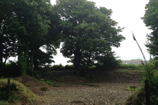 Land for sale in Fishguard
