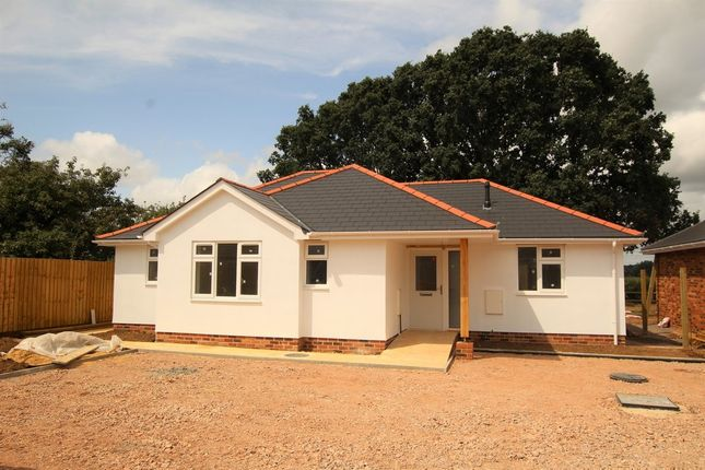 Thumbnail Detached bungalow for sale in Markham Avenue, Bournemouth