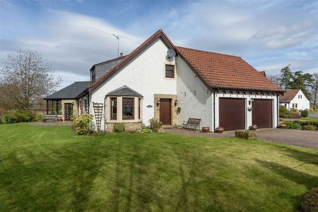 Thumbnail Detached house for sale in Ladybank, Cupar