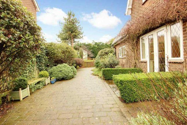 Garden At Side of Victoria Road, Beverley HU17