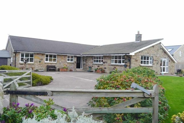 Thumbnail Detached bungalow for sale in The Guildens, Warkworth, Morpeth