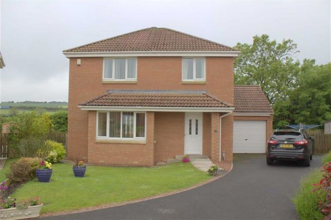 Thumbnail Detached house for sale in Meadow Lands, Tweedmouth, Berwick-Upon-Tweed