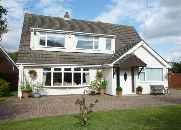 Thumbnail Detached house for sale in Pelham Avenue, Scartho, Grimsby