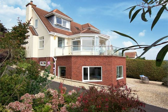 Thumbnail Detached house for sale in Bunts Lane, Seaton