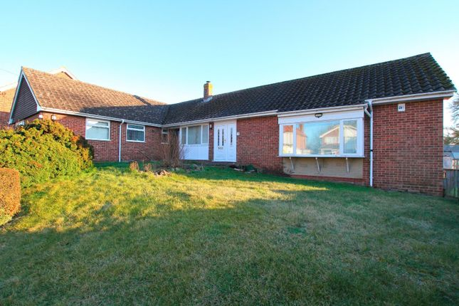 Thumbnail Detached bungalow for sale in Shalmsford Street, Chartham, Canterbury