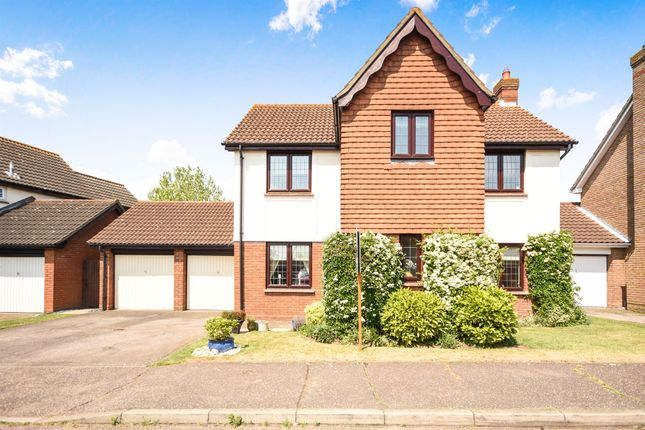 Thumbnail Detached house for sale in Pollards Green, Springfield, Chelmsford