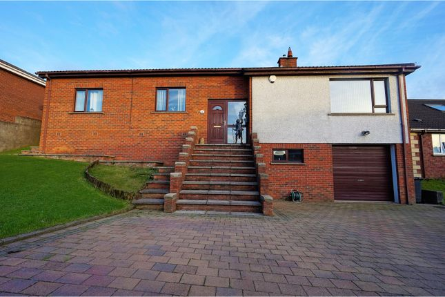 Thumbnail Detached bungalow for sale in The Willows, Newtownards