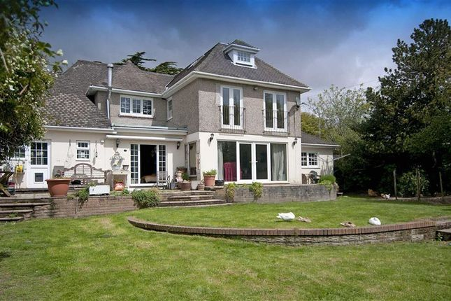 Thumbnail Detached house for sale in Higher Lane, Swansea, Swansea