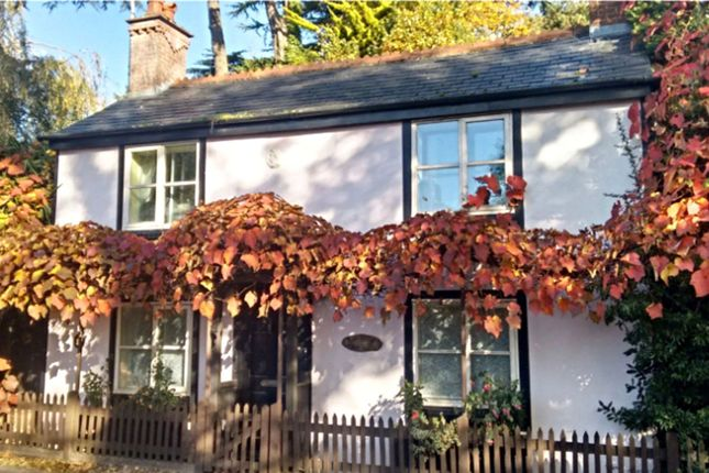 Thumbnail Cottage for sale in Bournemouth Road, Lyndhurst New Forest