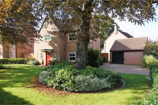 Thumbnail Detached house for sale in Burton Cliffe, Lincoln
