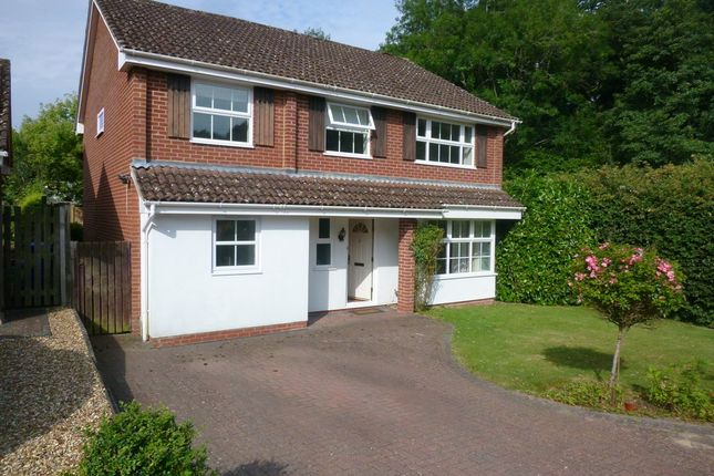 Thumbnail Detached house to rent in Mead Hatchgate, Hook