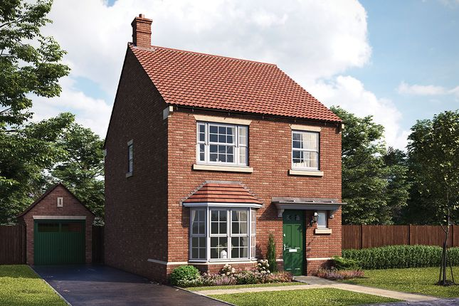 "Thumbnail Detached house for sale in ""Cusworth"" at Harrogate Road, Green Hammerton, York"