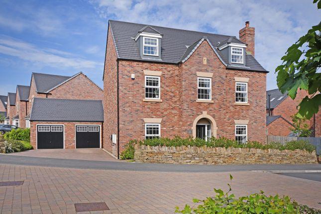 Thumbnail Detached house for sale in Saxon Avenue, Dore
