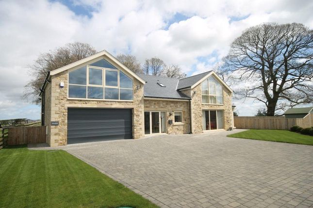 Thumbnail Detached house for sale in Kirkley, Newcastle Upon Tyne