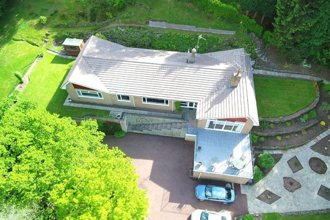 Thumbnail Detached bungalow for sale in Eastwood Rise, Newcastle
