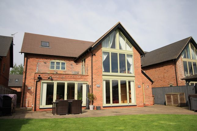Thumbnail Detached house for sale in Mill Pond Close, Hilton, Derby