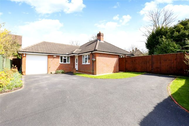 Thumbnail Detached bungalow for sale in Stonehouse Road, Liphook, Hampshire