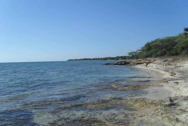 Thumbnail Land for sale in Black River, Saint Elizabeth, Jamaica