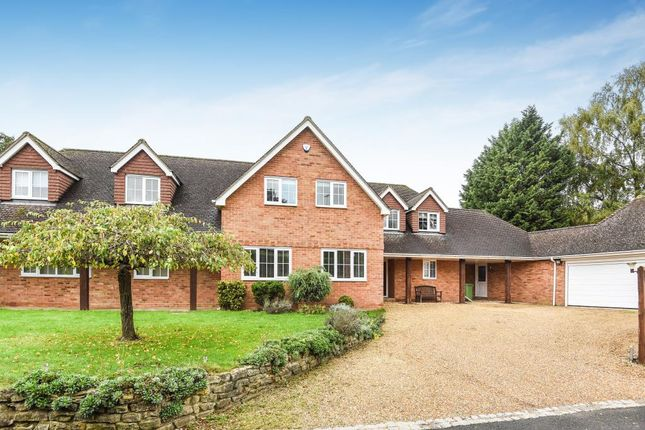 Thumbnail Detached house to rent in Popeswood Road, Binfield