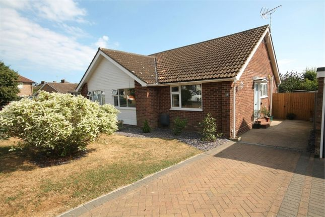 Thumbnail Semi-detached bungalow for sale in Branscombe Close, Frinton-On-Sea