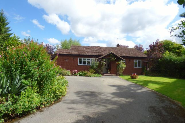 Thumbnail Detached bungalow for sale in Brooke Road, Kenilworth
