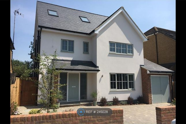 Thumbnail Detached house to rent in Fairmead Ave, Harpenden
