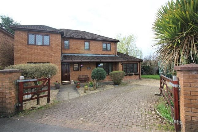 Thumbnail Detached house for sale in Moxon Road, Malpas, Newport