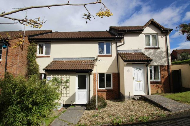 Thumbnail Terraced house to rent in Truro Drive, Badgers Wood