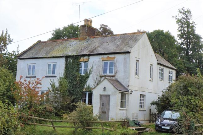 Thumbnail Semi-detached house for sale in Buckland Newton, Dorchester