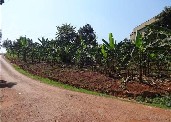 Thumbnail Land for sale in Kampala, Uganda