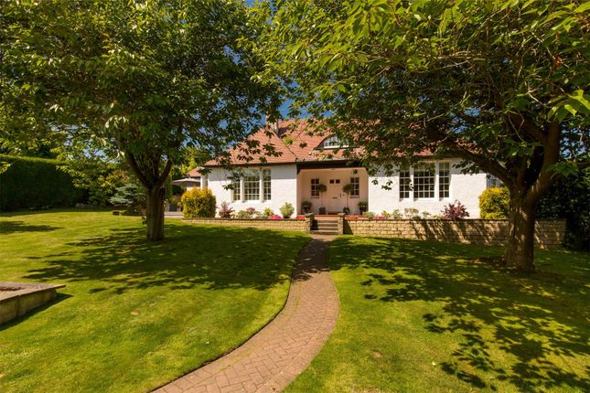 Thumbnail Detached house for sale in Fairmount, Lugton Brae, Dalkeith, Midlothian
