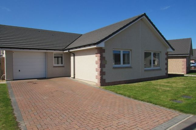Thumbnail Bungalow for sale in Modern Three Bedroom Bungalow For Sale, Lochloy, Nairn