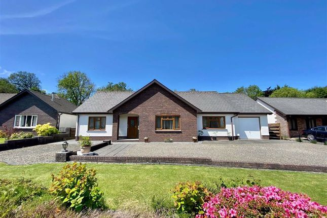 Thumbnail Detached bungalow for sale in Waungiach, Llechryd, Cardigan
