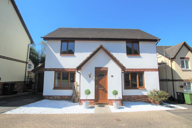 Thumbnail Detached house to rent in Barn Owl Close, Torquay
