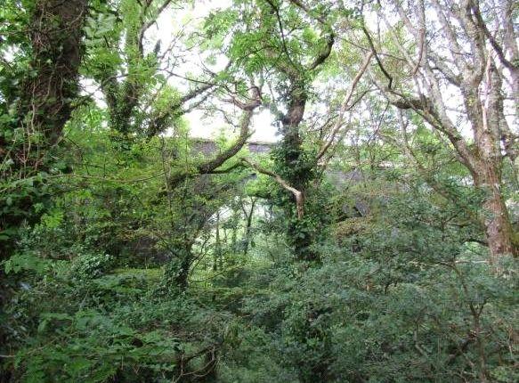 Picture No. 7 of Penponds, Camborne TR14