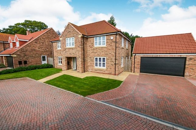 Thumbnail Detached house for sale in West View Close, York
