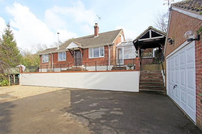 Thumbnail Detached house for sale in South Green, South Green, Sittingbourne, Kent