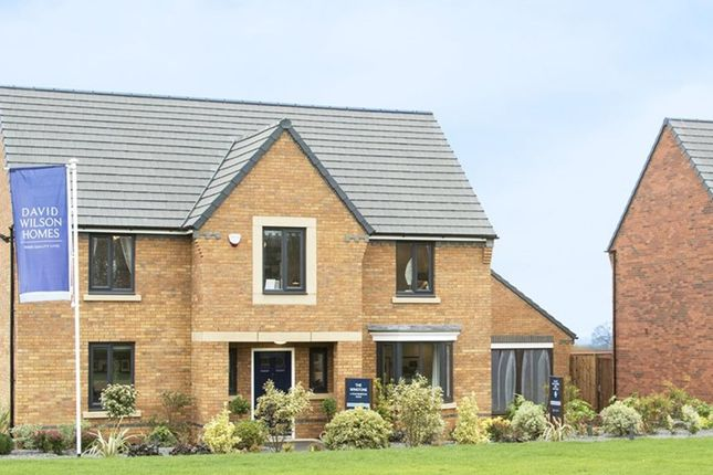 "Thumbnail Detached house for sale in ""Winstone"" at Carters Lane, Kiln Farm, Milton Keynes"