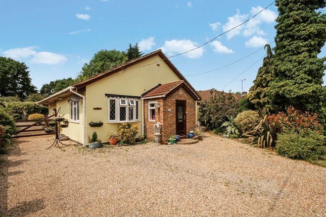 Thumbnail Detached bungalow for sale in New House Avenue, Wickford