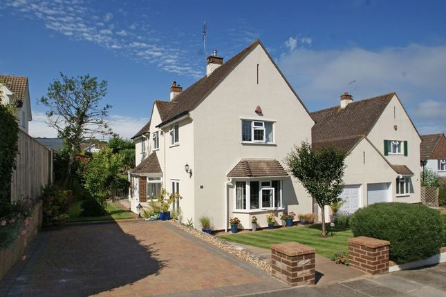 Thumbnail Detached house for sale in Southdowns Road, Dawlish